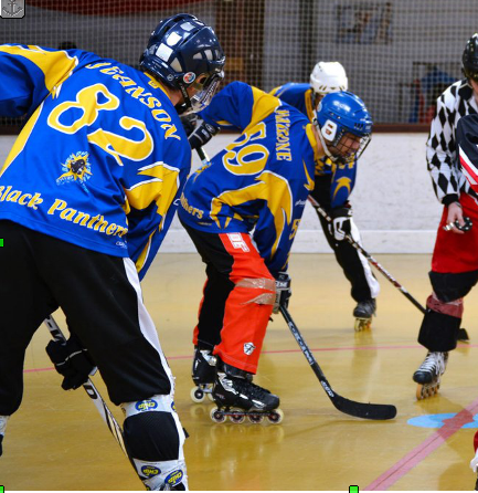 Roller In Line Hockey